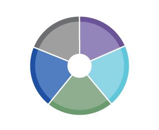 amelioration-rond-5-couleurs-2-2