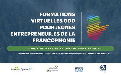 Formations virtuelles pour jeunes entrepreneur.es de la francophonie